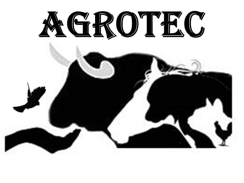 logo-agrotec-agropecuaria-pet-schop-racoes-ferramentas-camboriu-santa-catarina-sc